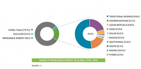 biofuels share-renewable-energy-global-tfec2010