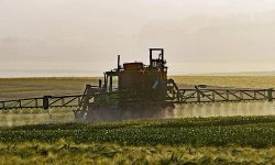 How The Glyphosate EU Ban Could Impact Our Industry