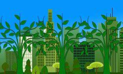 Frequently asked questions about green energy living